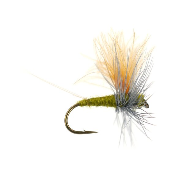 Olive Dun Cut Thorax - Medium Olive
